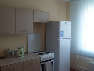 Nice Condo with Internet Access and Elevator Access - Novokuznetsk vacation rentals