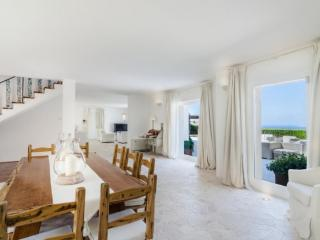 Liscia di Vacca Holiday Villa BL********** - Liscia di Vacca vacation rentals
