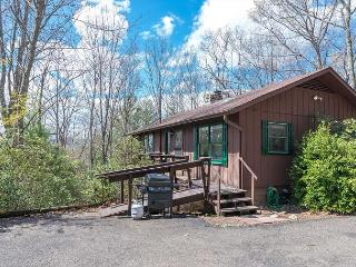 Cozy 2 bedroom Black Mountain House with Deck - Black Mountain vacation rentals