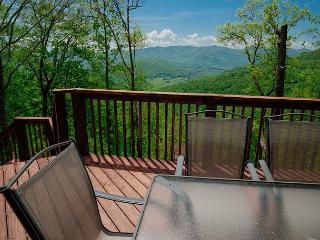 Nice House with Deck and A/C - Black Mountain vacation rentals