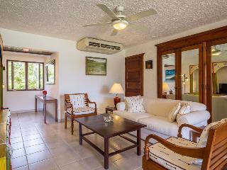 Ideal for A Couple & Golfers, Charming One Bedroom Condo Close to Minitas Beach - Altos Dechavon vacation rentals