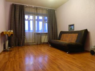 Sunny Condo with Internet Access and Wireless Internet - Petrozavodsk vacation rentals