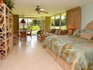 Maui Eldorado: Maui Condo G101 - Ka'anapali vacation rentals