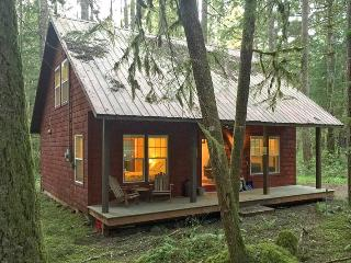 12GS Mt. Baker Cabin close to Skiing and Hiking - Glacier vacation rentals
