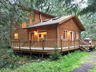64MBR Pet Friendly Cabin near Skiing and Hiking at Mt. Baker - Glacier vacation rentals
