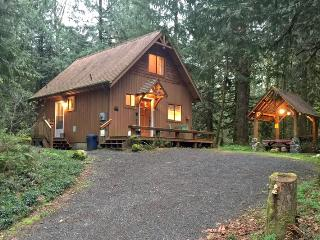 67MF Very Private Cabin with a Hot Tub near Silver Lake - Maple Falls vacation rentals
