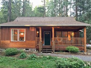 95GS Pet Friendly Cabin with a Private Hot Tub and WiFI - Glacier vacation rentals