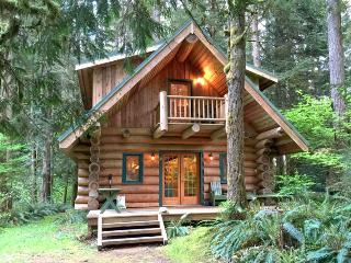 10SL Log Cabin at Mt. Baker with WiFi - Glacier vacation rentals