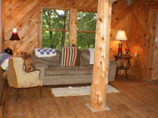 1br - Secluded Cabin on 40 Wooded Acres - Hart vacation rentals
