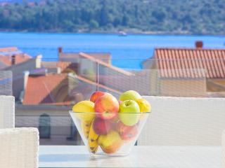 Penthouse with pool in Vodice - Vodice vacation rentals