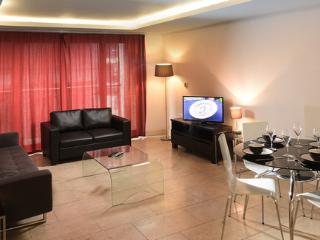 Luxury Two Bedroom, Two Bathroom Apartment - London vacation rentals