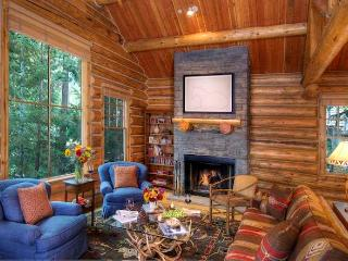 Cozy Cabin with Internet Access and Television - Teton Village vacation rentals