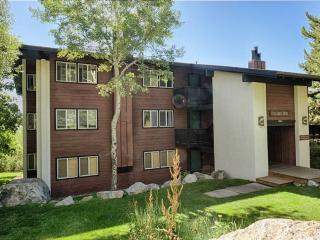 Nice 2 bedroom Teton Village Apartment with Internet Access - Teton Village vacation rentals