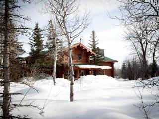 5.5bd/5ba Macker's Cabin - Wilson vacation rentals