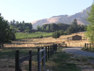 Wine Country Property on Acreage - Santa Rosa vacation rentals
