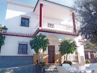 Villa in Sayalonga, Costa Del Sol, Spain - Sayalonga vacation rentals
