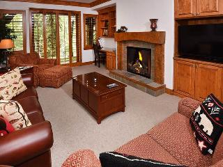 Beautiful 2 bedroom Apartment in Avon - Avon vacation rentals