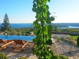 6 bedroom Villa in Labin, Istria, Croatia : ref 2242903 - Viskovici vacation rentals