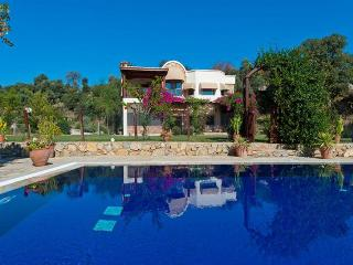 5 bedroom Villa in Bodrum, Agean Coast, Turkey : ref 2249294 - Ortakent vacation rentals