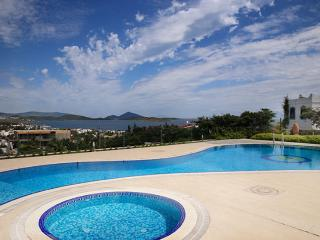 Spacious Villa with Internet Access and Water Views - Ortakent vacation rentals