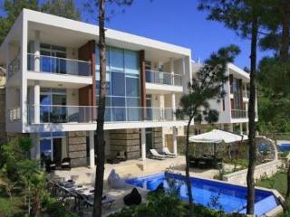 4 bedroom Villa in Kalkan, Mediterranean Coast, Turkey : ref 2249350 - Islamlar vacation rentals