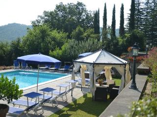 6 bedroom Villa in Monterchi, Tuscany, Italy : ref 2266187 - Lippiano vacation rentals