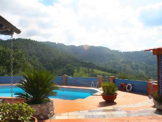 4 bedroom Villa in Massarosa, Tuscany, Italy : ref 2269205 - Stiava vacation rentals