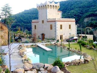 Villa in Tossa Del Mar, Costa Brava, Spain - Tossa de Mar vacation rentals