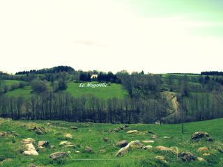 En pleine nature, 15km de Chastreix Sancy - Chastreix vacation rentals
