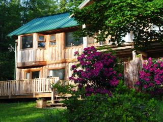 Brilliant by the Bay Bed & Breakfast - Mansons Landing vacation rentals