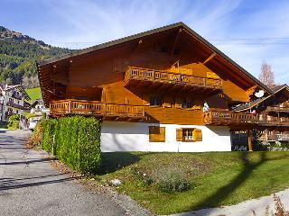 Beautiful 4 bedroom Apartment in Champéry with Internet Access - Champéry vacation rentals