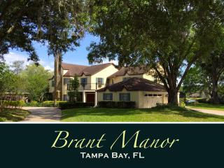 BRANT MANOR: 8 Bdrm, Lakefront Pool Home Near City - Tampa vacation rentals