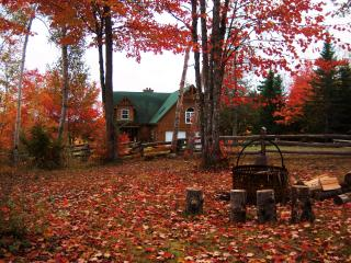 4 bedroom Lodge with Internet Access in Rexton - Rexton vacation rentals
