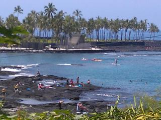 The Islands Best Diving and Snorkeling Bay, a True - Honaunau vacation rentals
