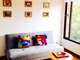 AMAZING 93 PARK LOVELY FLAT - Bogota vacation rentals