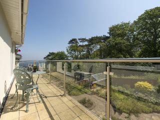 Sunny House with Internet Access and Water Views - Dawlish vacation rentals