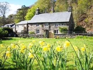 2 bedroom Cottage with Internet Access in Maentwrog - Maentwrog vacation rentals