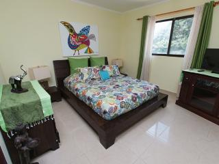 Convenient Condo with Internet Access and Dishwasher - Tamarindo vacation rentals