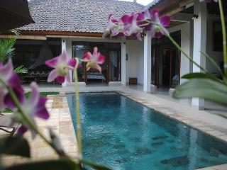 Villa Palm Merah - Stunning new villa, close2 Ubud - Ubud vacation rentals
