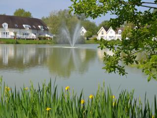 Lovely Lodge with Deck and Internet Access - South Cerney vacation rentals