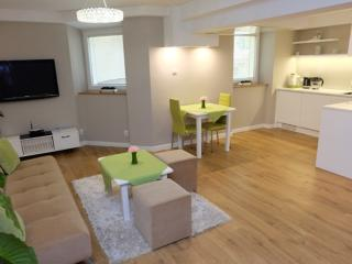 Cozy 1 bedroom Krakow Apartment with Washing Machine - Krakow vacation rentals