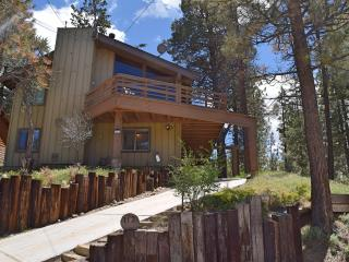 Nice Cabin with Internet Access and Hot Tub - Big Bear City vacation rentals
