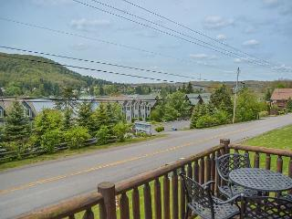 Fabulous 4 Bedroom Mountain Villa in the heart of Deep Creek Lake! - McHenry vacation rentals