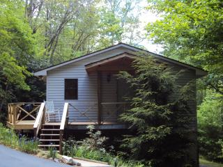 Private Mountain Cottage Close to National Forest - Pisgah Forest vacation rentals