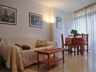 Bright 1 bedroom Condo in Adeje - Adeje vacation rentals