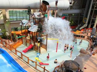 Wilderness Resort Water Parks Included - Sevierville vacation rentals