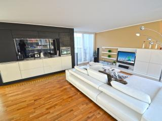 Penthouse Schmittenview - Zell am See vacation rentals