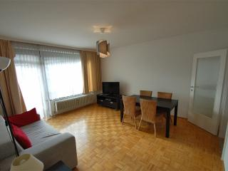 Apartment BERTL - near ski lift and town - Zell am See vacation rentals