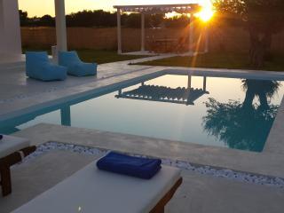 Nice 2 bedroom Villa in Lefkimi - Lefkimi vacation rentals