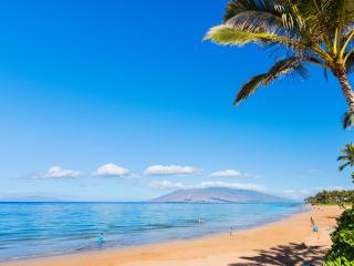 3 Bedroom House 5 mins. to the Beach - Kihei vacation rentals